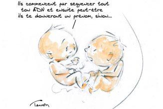 Projet de loi relatif à la bioéthique. L'embryon, un « amas de cellules » ?
