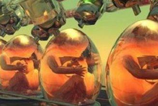 Fabriquer 7 embryons, en détruire 4, en congeler 2 et se réjouir de la naissance du dernier…