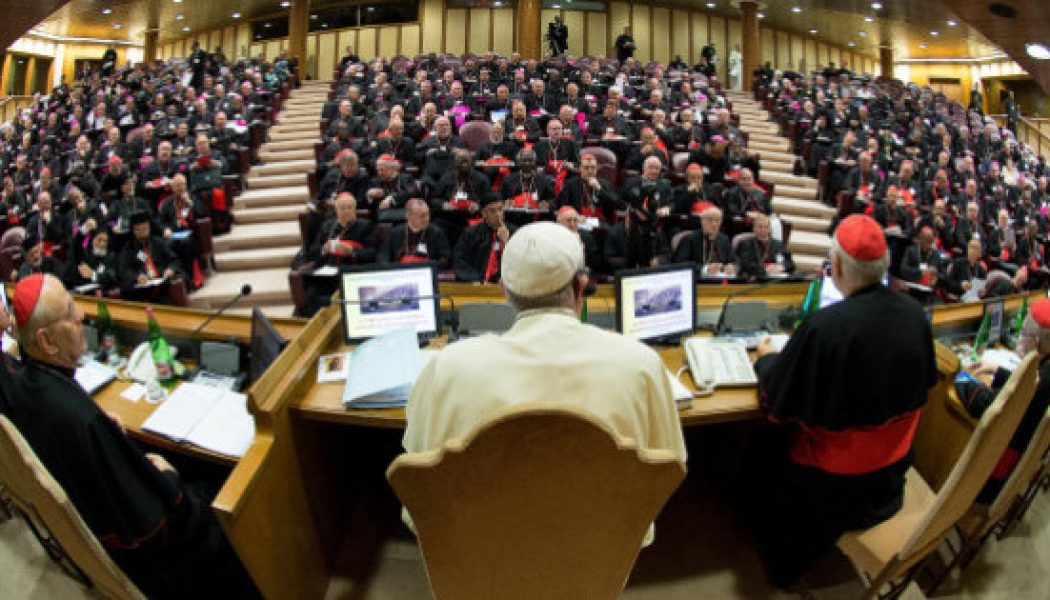 Journal d'un père synodal
