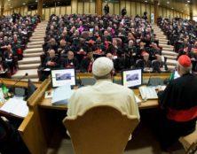 Journal d'un Père synodal (suite)