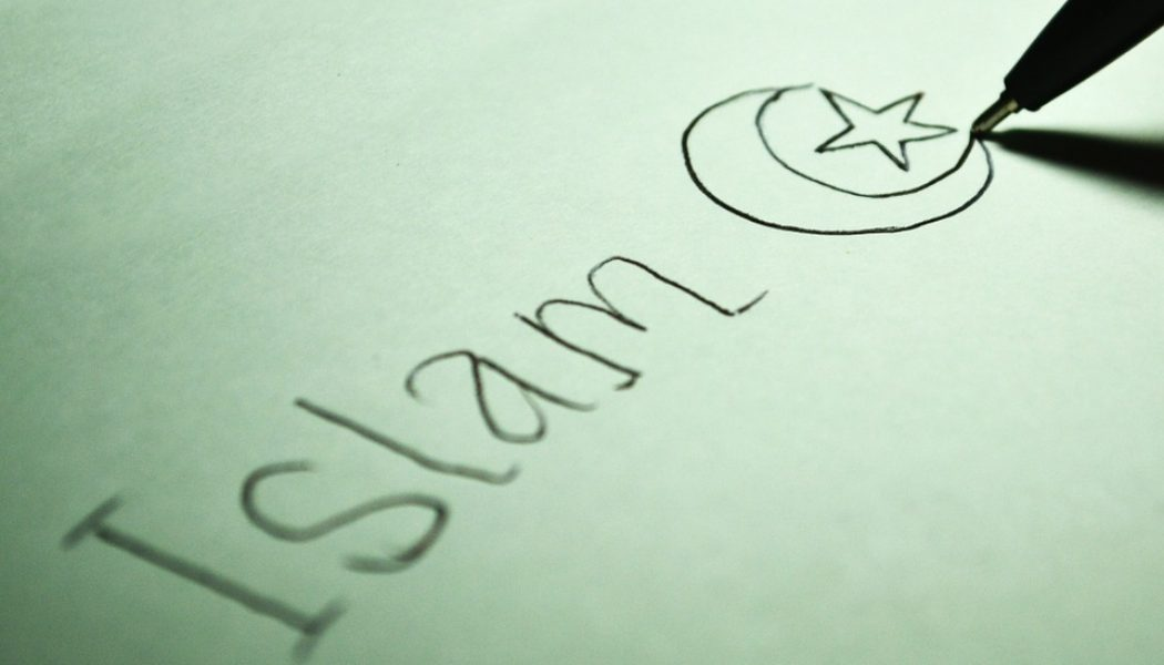 Les musulmans qui ne suivent pas la stratégie des Frères Musulmans sont persécutés