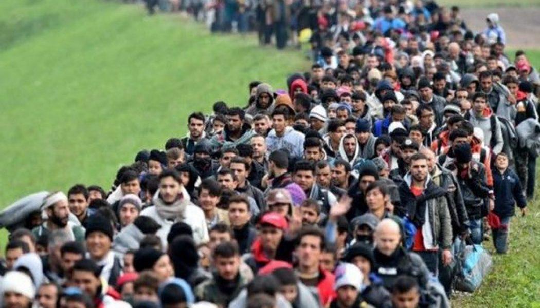 Immigration : tenir compte de la complexité et faire preuve de prudence