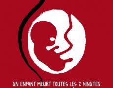 L'argent du sang intra-utérin : l'avortement est une affaire de très gros sous