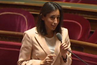 Madame LE ministre n'aime pas la langue française