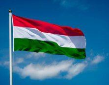 La Cour constitutionnelle hongroise rejette l'initiative contre la loi sur l'avortement