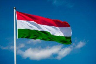 Vers une interdiction de l'avortement eugénique en Hongrie ?