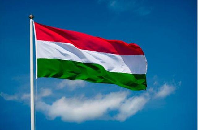 Les mesures pro-famille du gouvernement hongrois et leurs effets