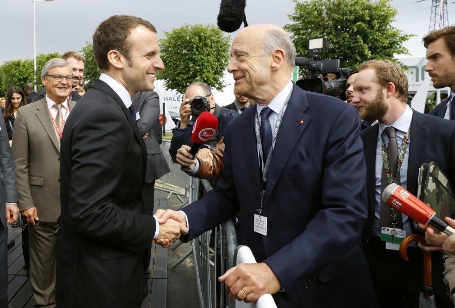 Avec Xavier Bertrand, ils ont trouvé le successeur d'Alain Juppé