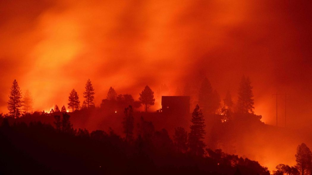 L'écologisme outrancier, cause des incendies en Californie ?