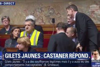 Jean Lassalle, un gilet jaune à l'Assemblée