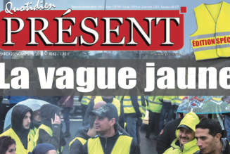 Gilets Jaunes : fausses nouvelles de Christophe Castaner