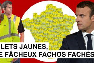 IMedia : Les gilets jaunes, aussi fachos que fâchés ?
