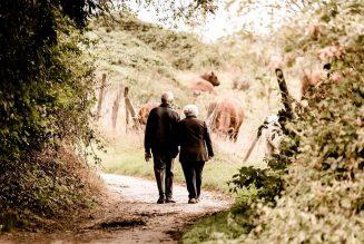 Pension de réversion : le gouvernement confirme qu'il détroussera les veuves