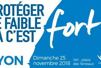 Marche pour la vie à Lyon dimanche : protéger le faible, ça c'est fort