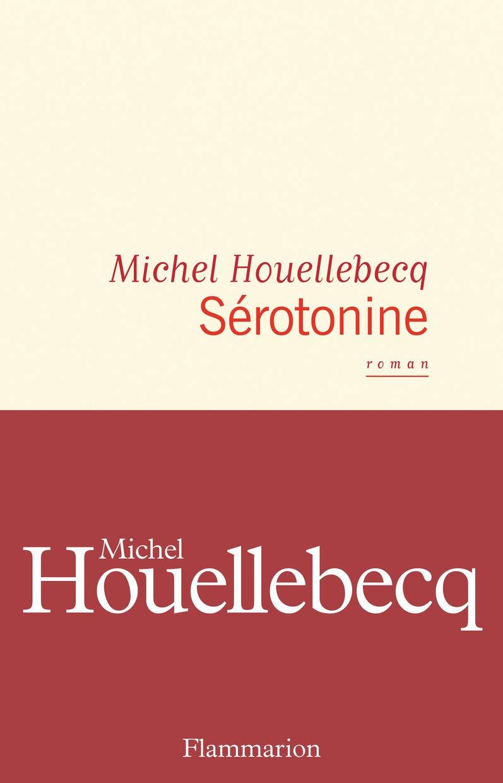 le roman de michel houellebecq s rotonine et gilets jaunes le salon beige. Black Bedroom Furniture Sets. Home Design Ideas