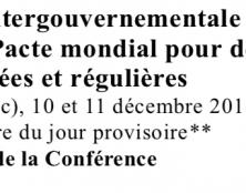 Le Pacte de Marrakech n'engage pas la France : intox