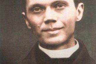 Neuvaine à Marie qui garde les prêtres : 1er jour
