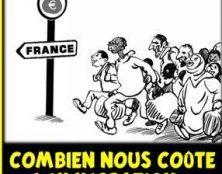 Des filières sont organisées dans le but de faire venir des immigrés en France pour se faire soigner gratuitement