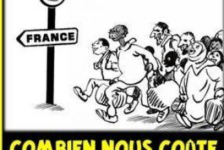 Les députés LREM votent le maintien de la gratuité dans les transports en commun pour les immigrés clandestins