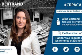 Aline Bertrand (RN) : Il serait bon que les hommes affirment la virilité équilibrée de leur nature