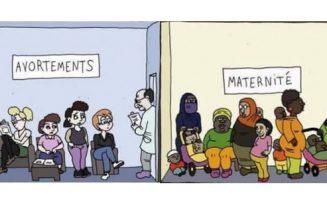 Avortement, démographie et immigration entraînent la recompositon ethno-culturelle de l'Europe