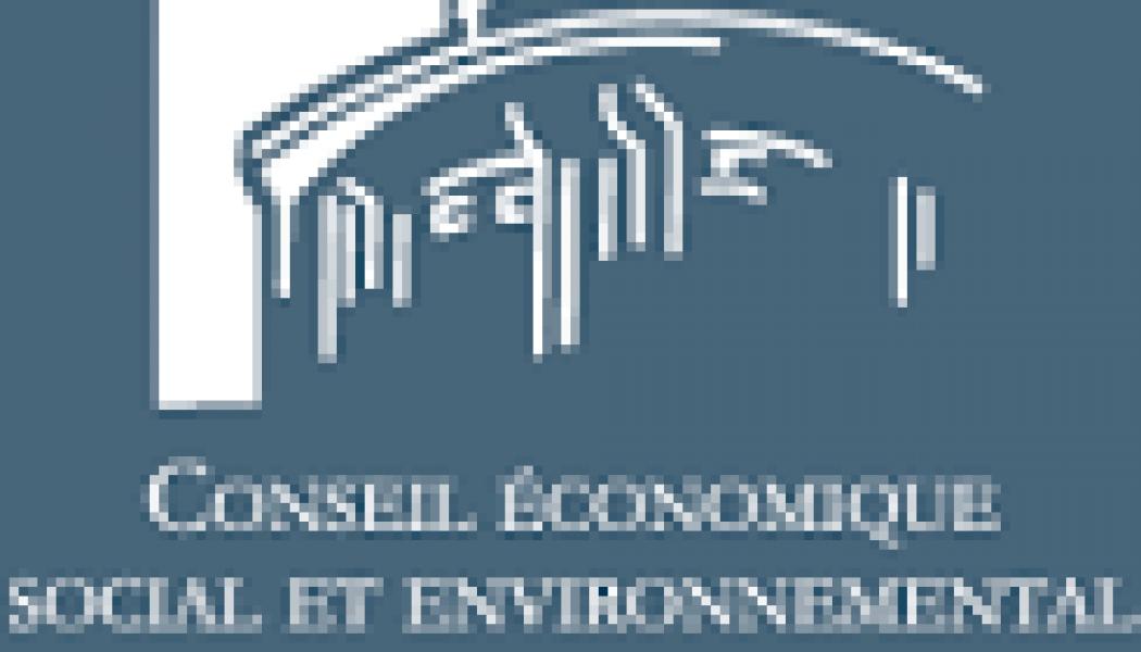 L'abrogation de la loi Taubira, revendication N°1 de la consultation en ligne du CESE