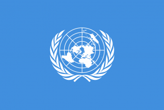 Des experts de l'ONU dénoncent des restrictions graves aux droits des manifestants « gilets jaunes »