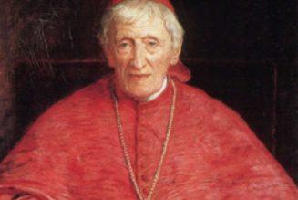 Canonisation du cardinal Newman