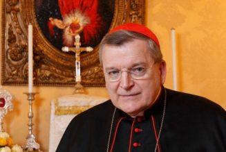 Lettre du cardinal Burke sur la pandémie actuelle et notre retour à Dieu [Corr.]