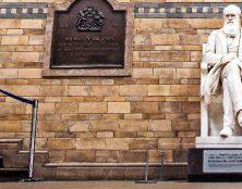 1000 scientifiques expriment leurs doutes concernant la théorie de Darwin