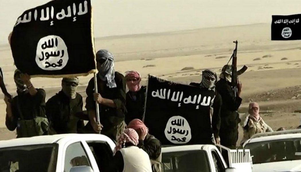 CEDH : des terroristes étrangers invoquent les droits de l'homme pour rester en Europe