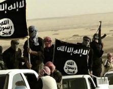 Affrontements entre Turcs et Kurdes : Plus de 10.000 combattants de Daech pourraient reprendre du service