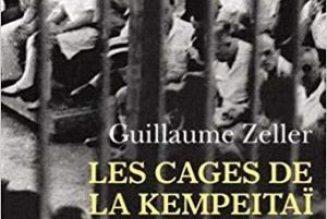 Ces Français oubliés, qui ont subi la terreur japonaise