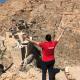 Le tourisme a repris en Syrie