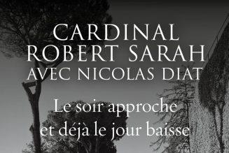 """Cardinal Sarah : """"J'ai pu apprécier les plus beaux fruits de la colonisation occidentale"""""""