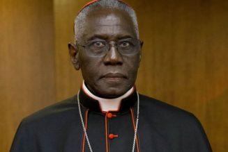 """Cardinal Sarah : """"Je ne sais pas quelle civilisation a légalisé l'avortement, l'euthanasie, a cassé la famille et brisé le mariage à ce point"""""""