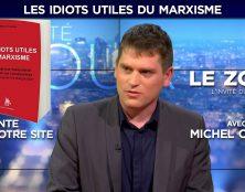 "Michel Courbe : ""Les idiots utiles du marxisme"""