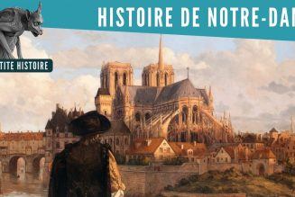 Notre-Dame : histoire d'une miraculée