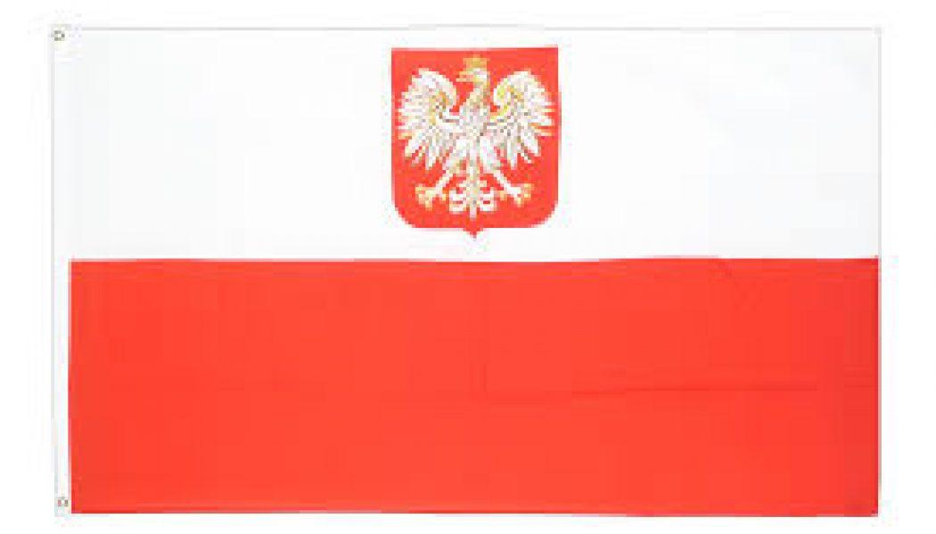 """La Pologne, refuge des familles persécutées dans les """"paradis"""" scandinaves"""