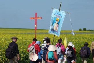 Quoiqu'il arrive, le pèlerinage de Chartres aura lieu