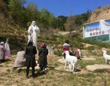 Chine: sit-in de catholiques pour empêcher la démolition de statues