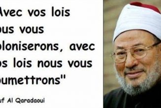 «Union des démocrates musulmans français» et grand remplacement, l'affaire est claire !