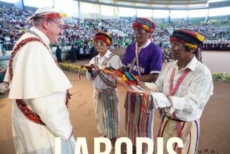 Le synode sur l'Amazonie se prépare
