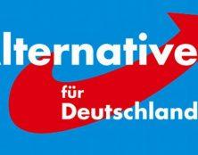 Allemagne : forte percée de l'AFD dans deux scrutins régionaux