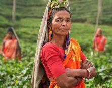 En Inde, des employées pauvres subissent des ablations d'utérus forcées