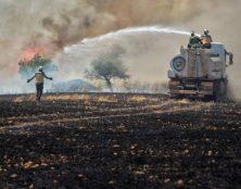 La nouvelle arme de Daech en Syrie : brûler les récoltes