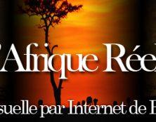 Algérie : « Ils ne sont grands que parce que nous sommes à genoux »