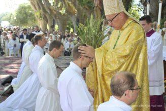 Les ordinations de prêtres dans les diocèses français en 2019