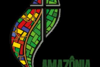 Synode sur l'Amazonie : les cardinaux Walter Brandmüller et Raymond Burke écrivent à tous les cardinaux