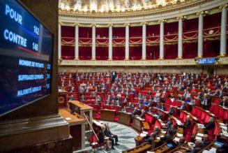 La comédie parlementaire sous la dictature Macron